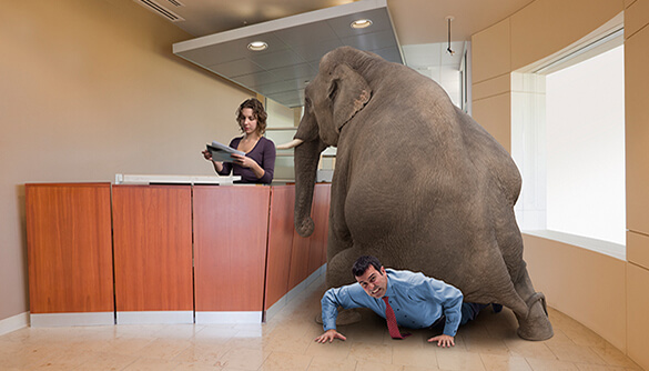 elephant-sitting-on-businessman